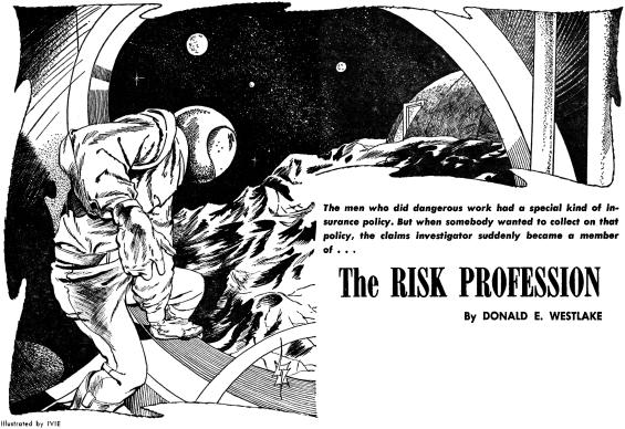 The Risk Profession by Donald E. Westlake
